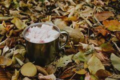 A cup of coffee with marshmallows on a background of yellow leaves stock photo