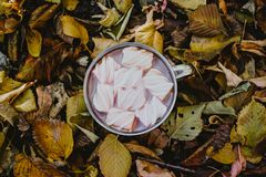 A cup of coffee with marshmallows on a background of yellow leaves royalty free stock photo