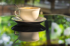 Cup of coffee on mirror glass table reflect green summer garden Stock Image