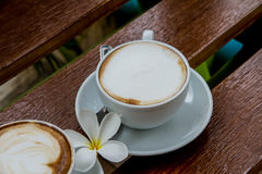 Cup of coffee. Morning coffee and flowers Royalty Free Stock Photo