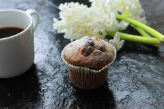 A cup of coffee with a muffin and a hyacinth on wooden background royalty free stock photo
