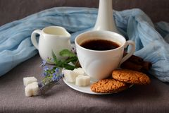 A cup of coffee and oatmeal cookies Royalty Free Stock Photos
