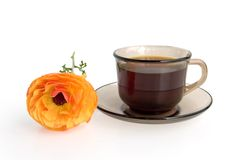 A cup of coffee and orange flower Royalty Free Stock Photos