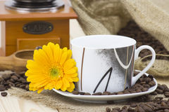 Cup of coffee and orange gerbera Stock Photography
