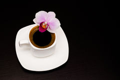 Cup of coffee. And orchid flower on a dark background Royalty Free Stock Image