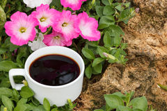Cup of coffee,Petunia flowers Stock Images