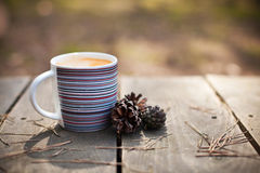 Cup of coffee and pine cones Royalty Free Stock Photo
