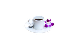 Cup of coffee with purple orchid flower isolated Stock Image