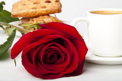Cup of coffee and red rose. Cup of coffee and a red rose on white background Royalty Free Stock Image