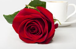 Cup of coffee and red rose. Cup of coffee and a red rose on white background Stock Images