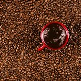 Coffee cup on coffee beans in close up photo. Cup of the coffee relating to coffee beans Stock Image