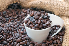 A cup of coffee roasted. In sack royalty free stock images