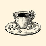 A cup of coffee on a saucer. Cubes of sugar and coffee beans. Vector illustration in sketch style. EPS 10 Royalty Free Stock Images
