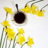 A cup of coffee and a saucer, daffodils on a white background. Copyspace Royalty Free Stock Image