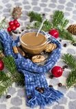 Cup of Coffee with Scarf  and Tea Biscuits Stock Images
