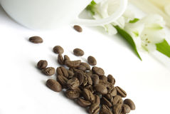 Cup of coffee and seed. Cup of coffee with seed and white flower royalty free stock photography
