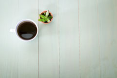 Cup of coffee and small plant Royalty Free Stock Photos