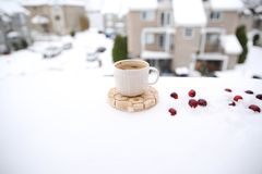 Cup of coffee and red berries on the snow royalty free stock images
