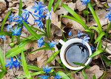Cup of coffee in spring flowers Royalty Free Stock Photos