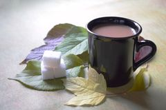 A cup of coffee. With sugar and autumn leaves Stock Image