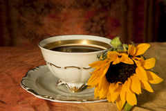 Cup of coffee and sunflower Stock Images