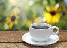 Cup of coffee on sunflowers Stock Image