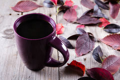 Cup of coffee surounded by red and purple fall leaves Royalty Free Stock Images