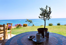 Cup of coffee on a table with olive tree Royalty Free Stock Photo