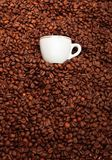 Cup of coffee with toasted beans, still life. Cup of coffee with toasted beans Royalty Free Stock Photography