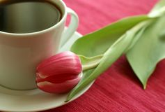Cup of coffee and tulip Stock Photo