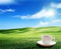 Cup coffee and tuscany hills Stock Image
