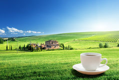 Cup coffee and tuscany landscape Royalty Free Stock Images