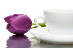 Cup of coffee with violet tulip Royalty Free Stock Photography
