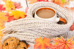 Cup of coffee and warm scarf with autumn maple leaves Stock Images