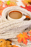 Cup of coffee and warm scarf on  wooden background with autumn l Stock Images
