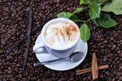 Cup of coffee with whipped cream Royalty Free Stock Image