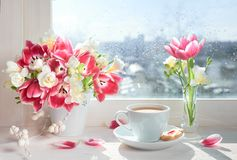 Cup of coffee on the window board, sunshine after the rain with. Cup of coffee on the window board, sunshine after the rain. Spring flowers: pink tulips and Royalty Free Stock Image