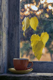 Cup of coffee. On a window sill in autumn Stock Photos