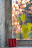 Cup of coffee. On a window sill in autumn Stock Images