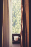 Cup of coffee at the window Royalty Free Stock Images