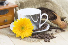 Cup of coffee with yellow gerbera Stock Image