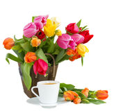 Cup of coffeeand spring  tulips Stock Image