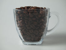 Cup with coffee beans Stock Photos
