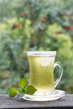 Cup of cold green tea with ice and mint Stock Image