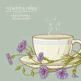 Cup of cornflower tea Stock Photo