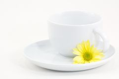 Cup and Daisy Stock Photography