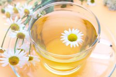 Cup with decoction of chamomile on a yellow background. Glass cup with decoction of chamomile on a yellow background royalty free stock images