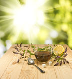 Cup with a delicious mint tea and twigs on the table. Against the sun stock photo