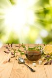 Cup with a delicious mint tea and twigs on the table against the sun Stock Images