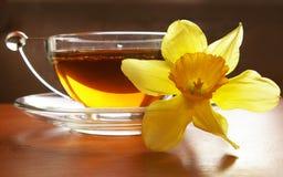 Cup des schwarzen Tees und der Blume lizenzfreie stockfotografie